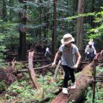 自然遊びと探検の旅