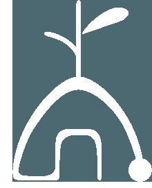 ウンカイナチュラルキャンプ2021